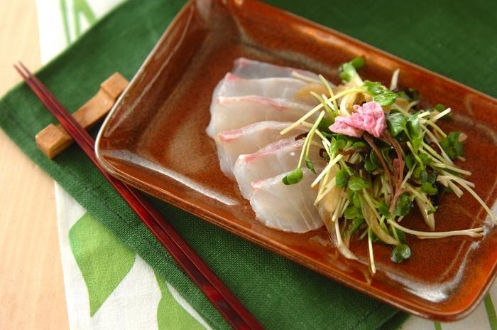 刺身用の鯛、新玉ねぎなどで作る鯛の和風カルパッチョ。桜の塩漬けは飾りとしてだけでなく、桜の塩漬けの塩を少しかけると桜の風味が加わり、より美味しくいただけます。