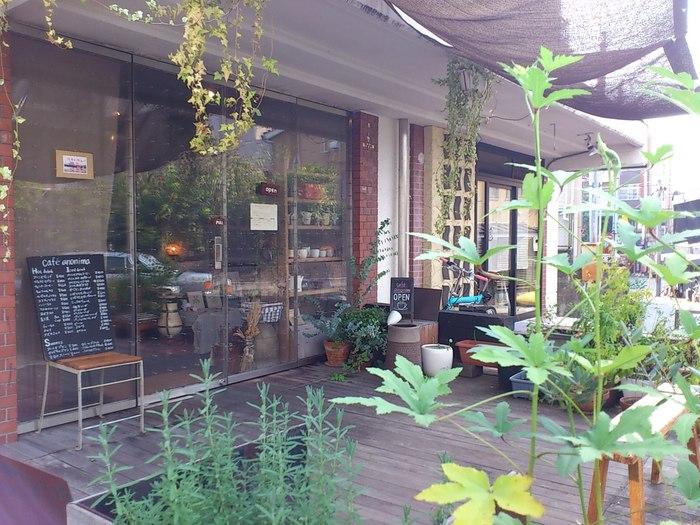 ガラス越しに店内を伺えるので、入りやすい雰囲気のあるカフェアノニマ。 入り口では植物たちもお出迎え。