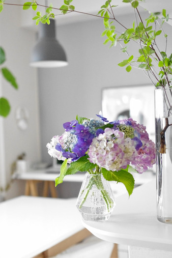 インテリアに季節感が出るお花は、取り入れやすくて簡単に雰囲気を変えられます。あじさいの鮮やかな色も素敵ですね。