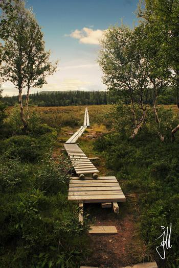 トレッキングコースとして有名なため歩きやすいように整備されている場所も多く、お子さんを連れてトレッキングを楽しんでいるご家族もいるようです。