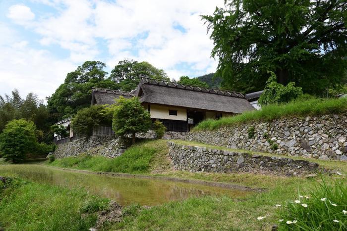 越畑、府道50号線沿いの高台に建つ「河原家住宅」も宕陰を代表する名所の一つ。河原家は、藤原鎌足の子孫が改姓したことに始まり、十六代目が当地へと移住した家筋です。  この民家は、建築年代が確定する京都市最古の住宅で、京都市指定文化財に指定され、主屋が、明暦3(1657)年、長屋門が元禄9(1696)年の建築。内部は非公開ですが、周囲の景色に溶け込んだ、萱葺き屋根、石垣の古民家の風情はここならでは。大イチョウも見所です。【画像は、5月下旬頃の河原家住宅」。】