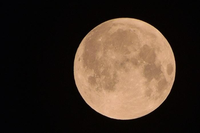 月の位置は、春・秋がちょうどよいのですが、くっきりと美しい月が見えるのは秋です。春は「おぼろ月夜」と言われるように花粉や黄砂の影響で空がかすんでいます。その点、秋は空気も澄んでいて、夜も過ごしやすい気候なので、お月見にはベストな季節なのです。
