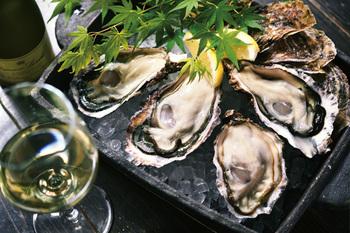 こちらが表参道商店街の人気店「牡蠣屋」。大きく新鮮な牡蠣は一度食べたらやみつきに。生牡蠣、焼き牡蠣、両方味わってみてください♪