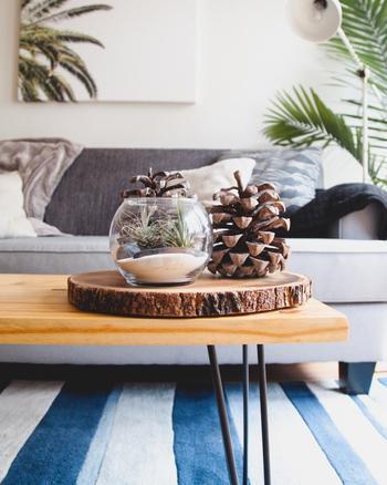 普段はインテリアとしてお部屋を演出し、心を癒してくれる観葉植物ですが常に水分を発しており、これも家の中の湿度を上げる原因となります。