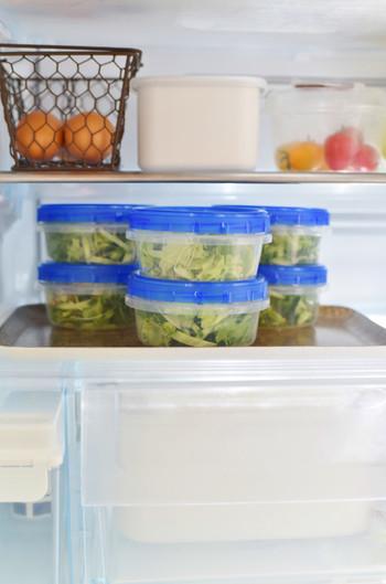 スタッキングしやすいジップロック、種類は豊富です。コンテナ以外にも冷凍保存に適したフリーザーバッグがあり、一通り揃えれば冷蔵庫の整理整頓がしやすくなりますよ。