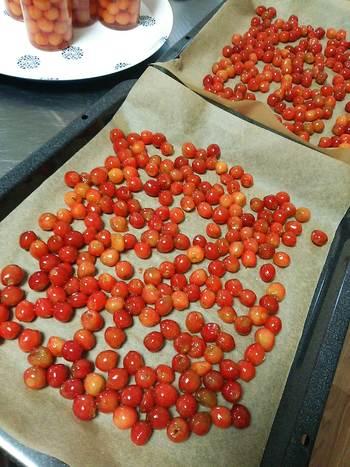 このセミドライチェリーのレシピでは、種を抜いたチェリーを一晩砂糖漬けにしてから、オーブンで乾燥焼きさせています。