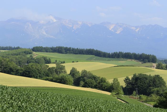 四季折々に素晴らしい景色の《美瑛の丘》は、昼間の観光ばかりでなく、美しい星空が眺められるスポットとしてもよく知られています。