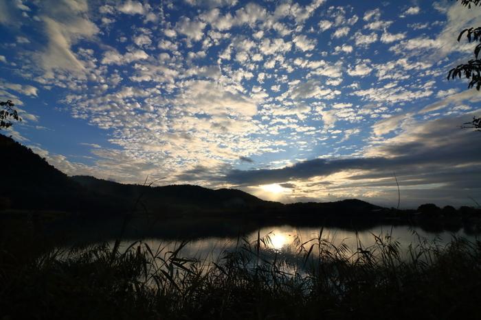 """【周囲の山々や遍照山が映り込んだ「広沢池」の景色は、桜や紅葉の頃に限らず四季折々素晴らしく、特に朝や夕暮れ時は、嵯峨野らしいのどやかで雅な景色が楽しめます。「五山送り火」の8月16日には""""灯籠流し""""が行われ、多くの人々が当地を訪れます。(画像は、8月下旬の広沢池)】"""