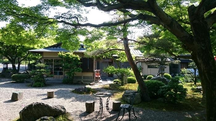 「池の茶屋」は、北嵯峨散策にちょうど良いロケーション。広沢池の南東に接する道路沿いに店があります。店の魅力は、気さくな店主と家庭的な雰囲気。メニューは、うどんや蕎麦といった麺類の他、丼物や、季節の甘味等などです。