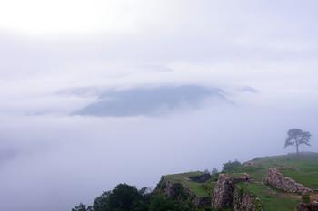 深い緑の山が連なる朝来市。 兵庫県の海岸沿いから北上し丹波篠山エリアに位置します。 昔話に出てきそうな稜線ですね。