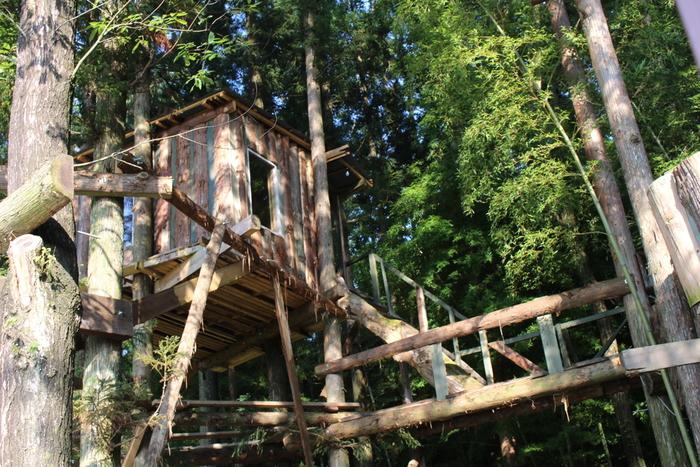 それは木の枝の上に板を張ったツリーハウスのようなものだったり、ダンボールを置いて、間仕切りをしただけの簡単なものだったり、使われていない古い建物の一角だったり、様々なものがありましたよね。