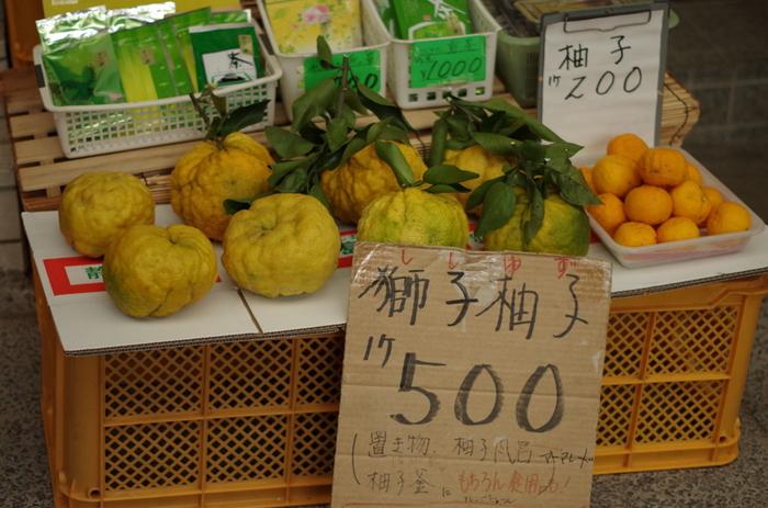 獅子柚子、鬼柚子とも呼ばれる巨大な柚子。 柚子という名前がついていますが、本柚子や花柚子とは別種の植物です。 大きいもので直径20センチ程度にまで成長するようです。 生食には向きませんが、香りも強く、柚子湯に入れたり、マーマレードなどにして食べたりします。