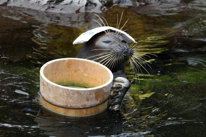 箱根観光に来てあちこち歩き回っていると、どうしても疲れてしまいますよね。せっかくの箱根だし温泉に入って癒されたいけど、宿もとってないし日帰り湯にゆっくり浸かるほどの時間の余裕はないし…。