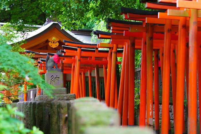 根津神社は約1900年前に日本武尊が創祀したと伝えられている古社です。毎年春に開催される「つつじ祭り」も有名です。
