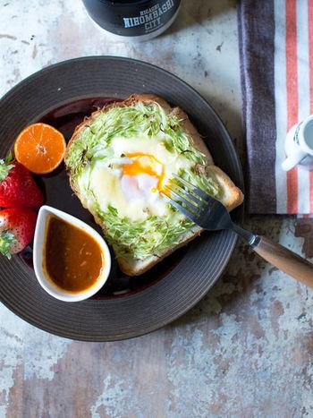 野菜も卵も一度に取れるヘルシーな朝食プレートです。キャベツを芝生のように敷き詰めて、卵の黄身がくっきり映るように盛り付けます。  ソースは小さな器にいれて、ワンプレート風にオシャレに盛り付けて♪サイドにイチゴやオレンジなど発色のいいフルーツを添えたらできあがり。
