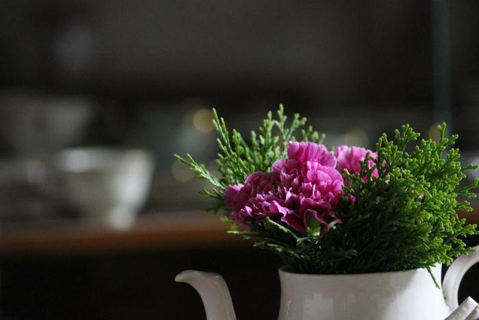 ポットやカップ、缶など、キッチンアイテムを上手に利用して植物を飾ってみませんか?