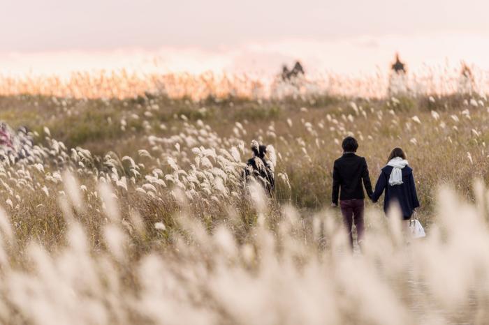 一面のススキに溶け込む人々がとってもロマンチック。見る角度によって変化する風景には、シャッターチャンスがたくさん。