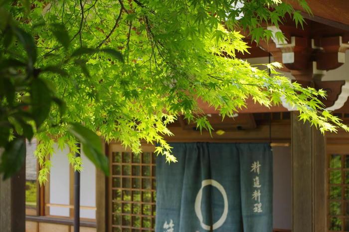 伝統ある寺院が多く存在する京都では、さまざまな宗派の隆盛にともない、精進料理も発展してきました。せっかく京都を訪れたなら、お寺の拝観も楽しみつつ、境内やお寺のすぐそばでゆっくりと精進料理を味わってみてはいかがでしょうか。