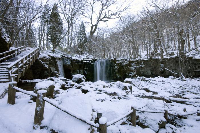 氷柱、氷瀑、しぶき氷…厳しい寒さの中で生まれるダイナミックな景観に、自然のパワーを感じます。