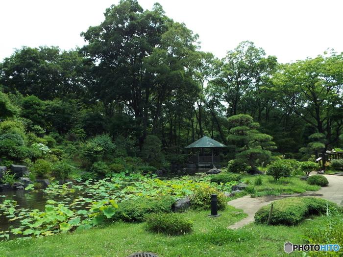 日々の雑事に追われて、慌しい毎日を送る生活。そんな暮らしに少し疲れてしまったら、静かな時間を過ごしに日本庭園へ出かけてみませんか?実は東京にも、豊かな自然に囲まれた素敵な日本庭園がいくつもあります。都会にいながら、気軽にリフレッシュに出かけられますよ。