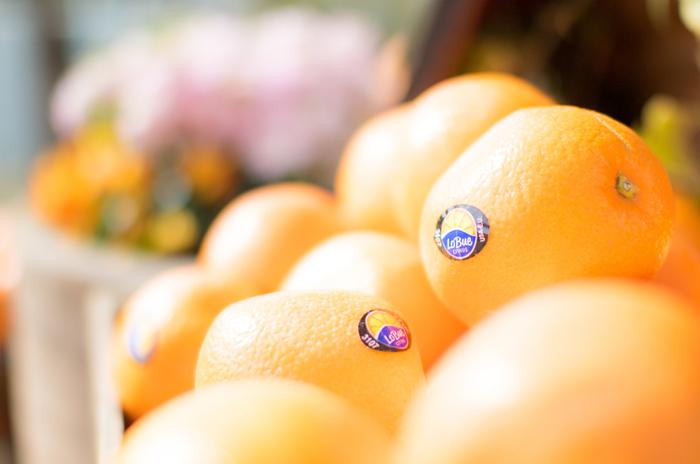フレッシュな果物や野菜で作るジュース、見た目にも色鮮やかで、飲むと元気が出そうですね。普段はカフェでコーヒーや紅茶という方も、時にはビタミンたっぷりのフレッシュジュースに変えてみてはいかがでしょう?