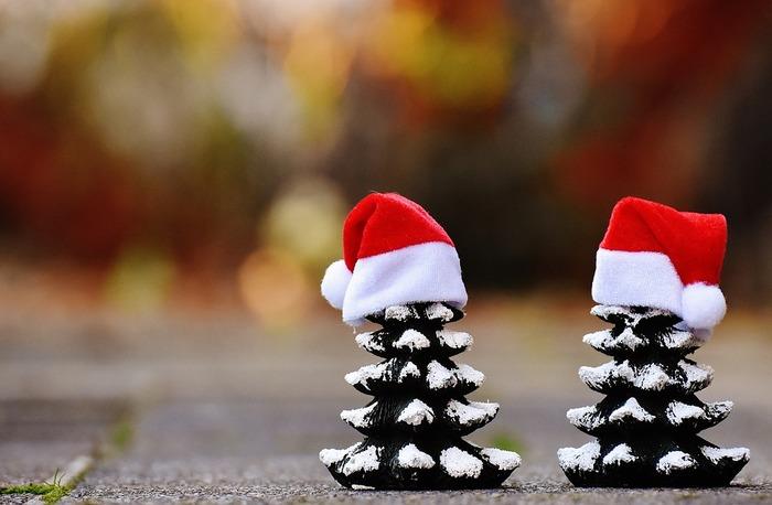 11月から少しずつ、思わずにっこりできたりほっとするクリスマスアイテムを集めませんか。子どもの頃のようにサンタクロースを待ちわびて。