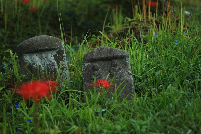 【穴太寺周辺の道祖神。彼岸花と露草。】