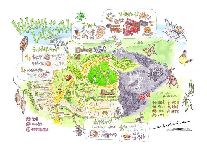 『ラ コリーナ近江八幡』は、和洋菓子を扱うメインショップ、カステラショップ、フードガレージから構成されるフラッグシップ店です。施設内には、近江の原風景を再現した田んぼや畑があり、近江八幡の緑豊かな自然の中でスイーツを楽しむことができます。
