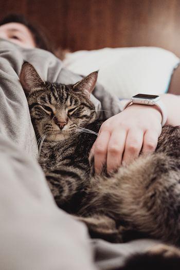 猫のモチーフがかわいい雑貨をご紹介しました♪まだまだ紹介しきれないですが、どのアイテムも愛らしくて目移りしてしまいますね♪ぜひ、お気に入りの猫ちゃんを見つけてみてくださいね。