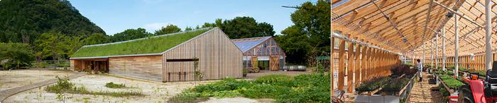 """農業や環境など常に未来に向けてサスティナブルな生き方を見つめながら、企業活動を実践してきた「たねやグループ」。""""自然と共生する農業""""を目指して野菜や果物づくりに取り組む「北之庄茶園」と、3万株もの山野草を育てる「愛四季苑(はしきえん)」、敷地内の植栽やランドスケープ全体の手入れをする「ラ コリーナ近江八幡造園」からなる『たねや農藝』は、ラ コリーナ近江八幡が一番大切にしている""""農""""を実践している場所です。"""