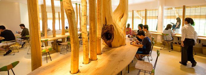まるで栗林の中にいるような木のぬくもりあふれるカフェでは、しっとり美味しい「カステラ」と、焼きたての「八幡カステラ」がいただけます。また、ランチタイムには数量限定の「カステラたまごのオムライス」など、ここでしか味わえない魅力的なメニューも提供しています。