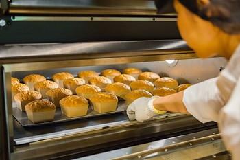 「焼きたての食感や卵の風味をもっとお楽しみいただきたい。」そんな思いから生まれた「八幡カステラ」。長年カステラづくりで培われた職人技で、一つ一つ丁寧に焼き上げています。たねや自慢のカステラをぜひご堪能ください!