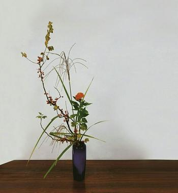 そのまま飾っても雰囲気がありますが、こちらはススキにケイトウとサンザシを合わせておしゃれな生け花に。秋の花の凛としたたたずまいに、空間が涼しげに引き締まります。