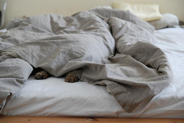 大きな家具を処分すると、部屋がとても広く感じます。ベッドを止めて敷布団に変えると、日中部屋が広々と使えますよ。