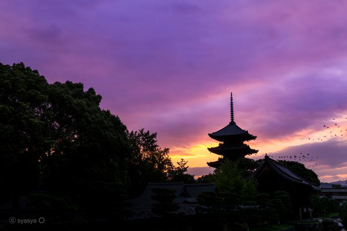 最近では外国人観光客も増え、ますます賑わいを見せている京都。これから紅葉シーズンになるととても混雑し、人混みの中で参拝することになります。ですが、早朝であれば人が少なく、ゆっくり参拝することができるんです。