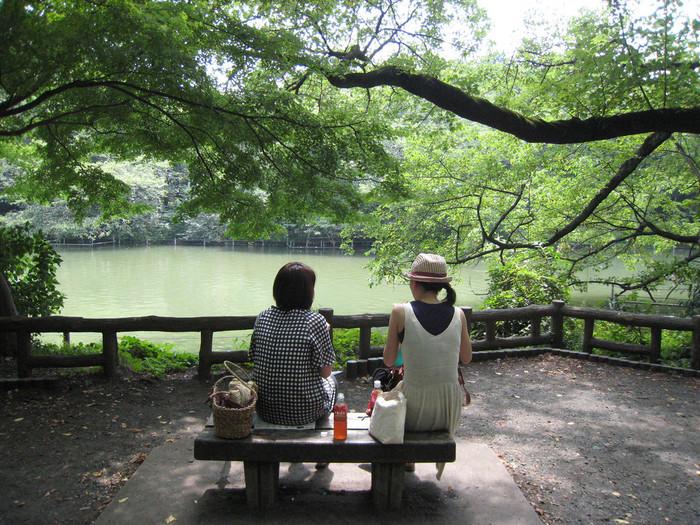 近くには緑豊かな井之頭恩寵公園があるのも吉祥寺の魅力の一つです。今ではファッショナブルな街というイメージの強い「吉祥寺」ですが、もともとは中央線沿線の音楽や文学、演劇を愛する人の集う文化の発信地でもあります。