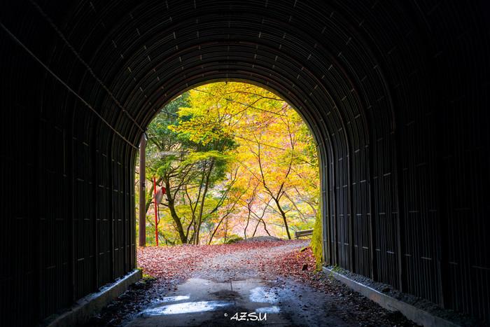 スタートから約4.7km。ようやく1つ目のトンネル、境隧道が。ここは懐中電灯なしでも大丈夫です。