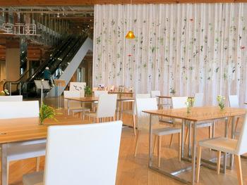 カフェ「FUMUROYACAFE TOYAMA」では図書館で借りてきた本を読むことができます。「麩」を使ったランチやデザートも食べることができるので、ぜひ利用してみてくださいね♪