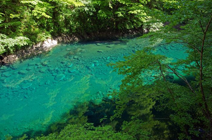 【神奈川県】美しすぎるブルーの川。「ユーシン渓谷」へ行こう!