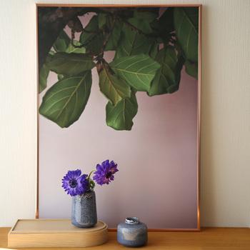 デンマーク発、日本初上陸の注目ブランド【Paper Collective/ペーパーコレクティブ】。さまざまなモチーフをアーティスティックに描いたポスターが特徴的です。こちらはグリーンリーフのフォト。バックが薄いピンクなのが、なんだか情緒的です。