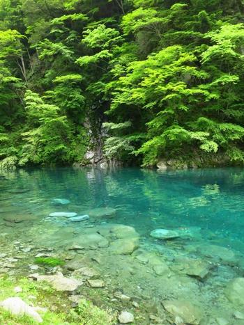 「ユーシン渓谷」という珍しい名の由来は諸説ありますが、大正時代に森林管理小屋の番人をしていた小宮兵太郎が「谷深くして、水勢勇まし」と語った言葉から、湧津と名付けたとも言われています。