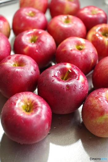 リンゴの原型とも言われる品種で、強い酸味と引き締まった果肉が特徴です。  強い酸味は、砂糖と混ざりあった時に上品な味わいになるので、紅玉を使ったりんご酒は、甘さと酸味のバランスよく、果実酒づくりにおすすめの品種です。