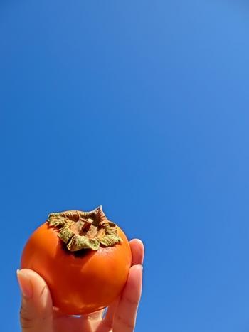 """いかがでしたか? 今が旬の秋の味覚柿を使って作る""""柿ジャム"""" フワッと広がる優しい甘さに癒されそうですね… 柿ジャムのレシピは比較的簡単なので、是非、みなさんも1度チャレンジしてみてはいかがでしょうか? やっぱり、旬のものを美味しく頂ける時期にいただくというのはとっても幸せな事ですよね(^^♪"""