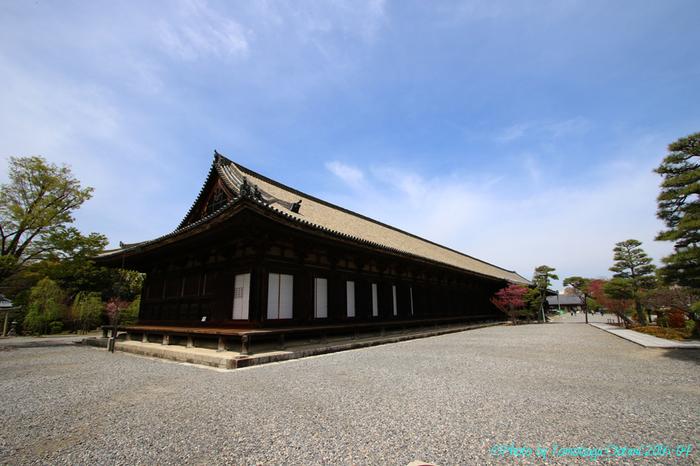 平安後期、後白河上皇が、平清盛の資財協力によって創建したものでしたが、1249(建長元)年に焼失し、鎌倉期1266(文永3)年に再建されたのが現存のものです。