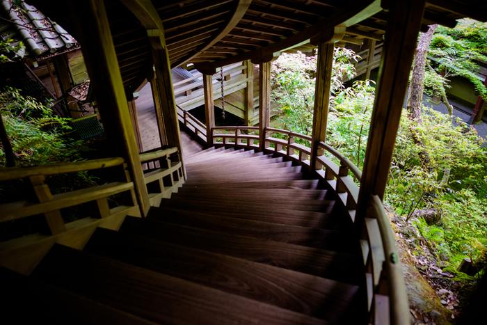 永観堂は、古方丈から瑞紫殿、御影堂、阿弥陀堂などが回廊でつながっているので、見ごたえのある唐門前庭、方丈南庭などを、屋根のある回廊からゆっくり鑑賞でき、雨の日の散策におすすめです。 中でも、山肌の地形を生かした臥龍廊は、上記画像で見るように、木造でありながら美しい曲線を用いた見ごたえのある建物。堂内は撮影NGですが、建物やお庭は撮影可能です。