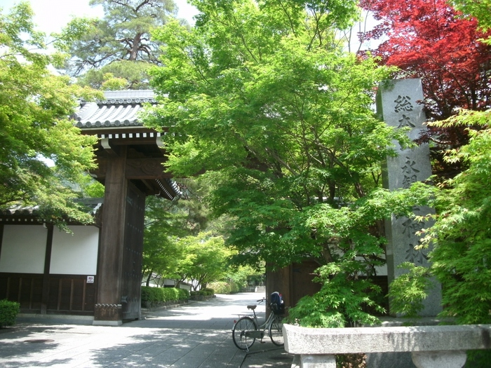 古くより「秋はもみじの永観堂」と言われるほど、紅葉の名所として知られています。