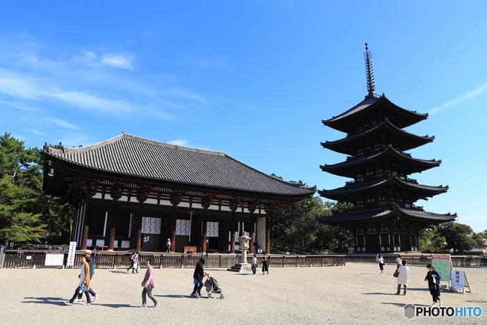 奈良を代表する寺院のひとつ「興福寺」。 高い建物が少ない奈良市内の様々な場所から見える「五重塔」、「薬師如来」「日光・月光菩薩」を安置する「東金堂」、「阿修羅像」等の仏像を展示する「国宝館」など、見応えがあります。