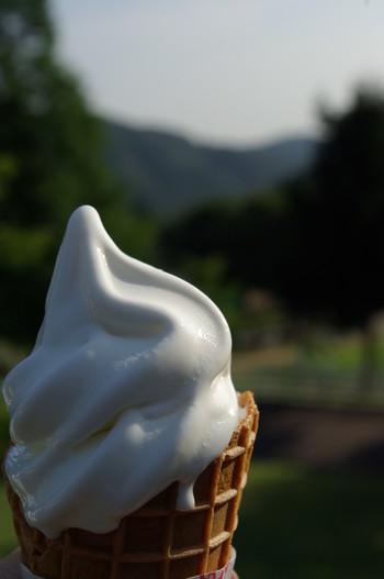 六甲山牧場名物なのが、カマンベールチーズ入りのソフトクリーム。コクがあって奥行きのある味わいをぜひ楽しんでください。この他、「六甲山牧場レストハウス」では六甲山牧場で絞った牛乳を飲むことができます。