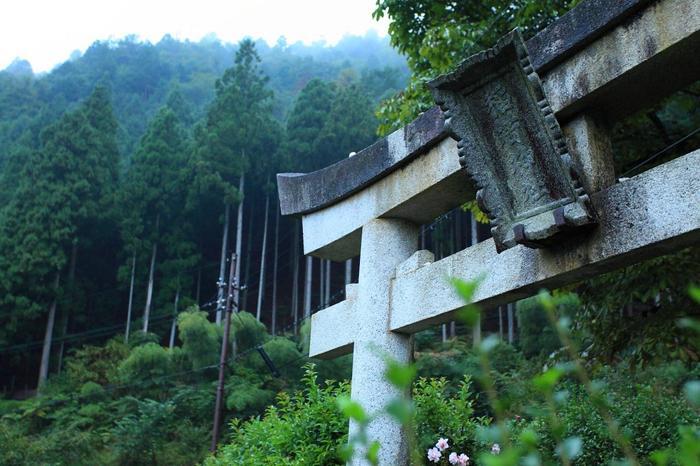 【「美山かやぶきの里」に鎮座する「稲荷神社」。境内の栃の木(とちのき)は、樹齢400年を数え、美山の名木に選定されています。】