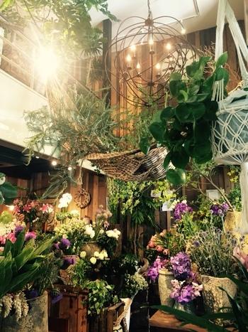1,2階がお花屋さん、3階と屋上テラスがカフェという造りの店内。着いた瞬間からワクワクさせてくれる素敵な雰囲気のお店です。